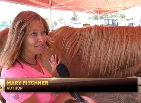RFD TV and Rusty the Ranch Horse