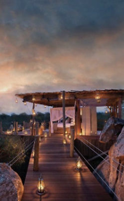 A luxury safari lodge tree house