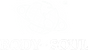 B&S White Logo.png