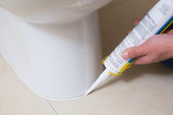 silicone_toilet.jpg