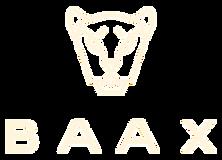 BAAX-LOGO.png