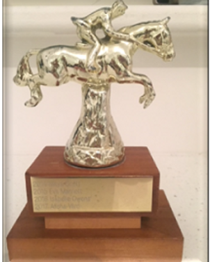 Intermediate B Show Jumping Super Trophy