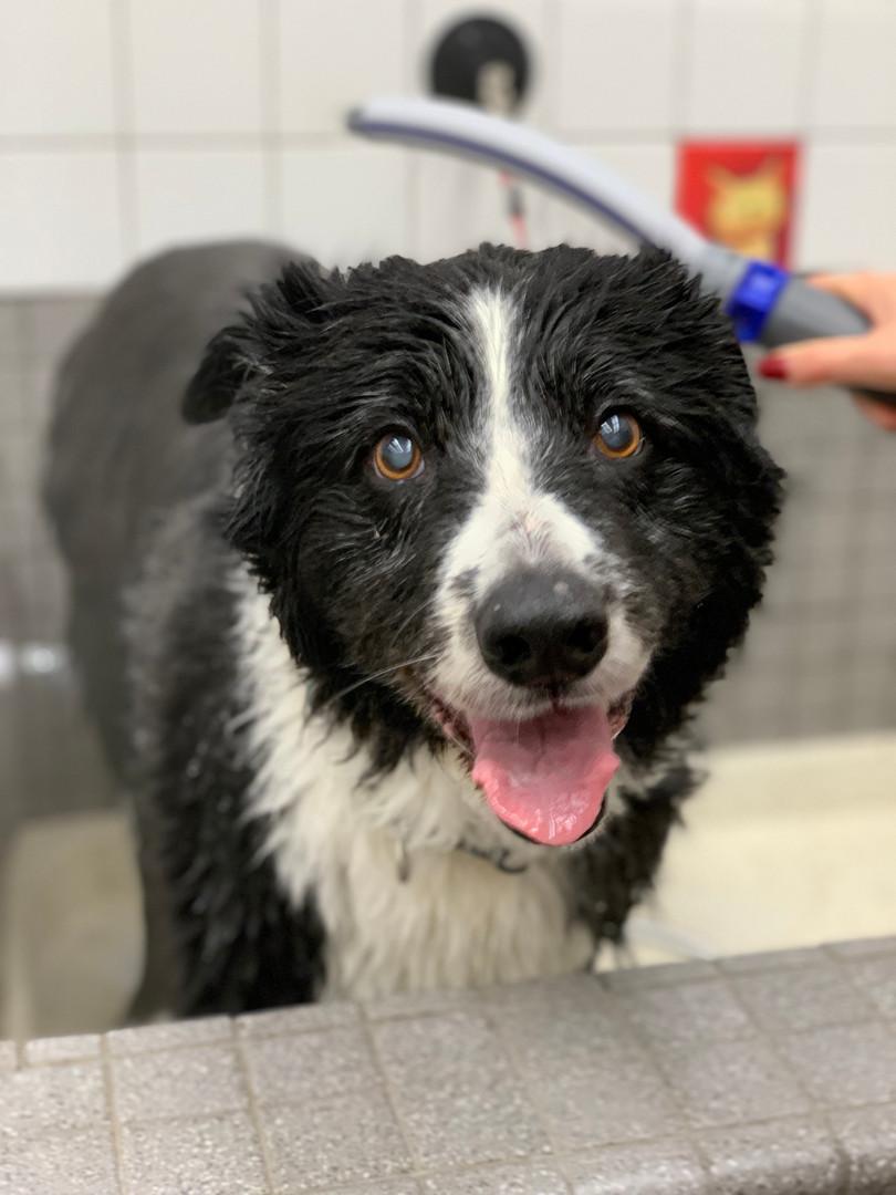 Washing after swimming