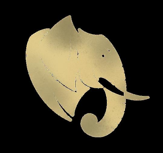 elephant%2520gauche_edited_edited.png