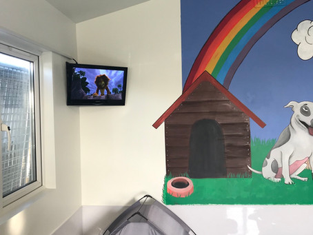 New daycare playroom