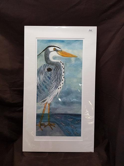 Handsome heron
