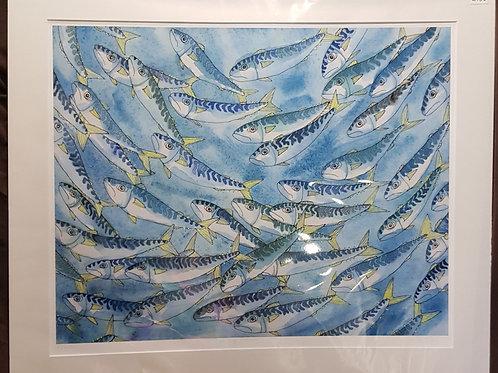 Swirling Mackerel