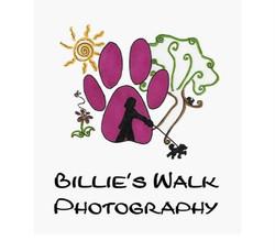 Photo greetings card gift walk cornwall
