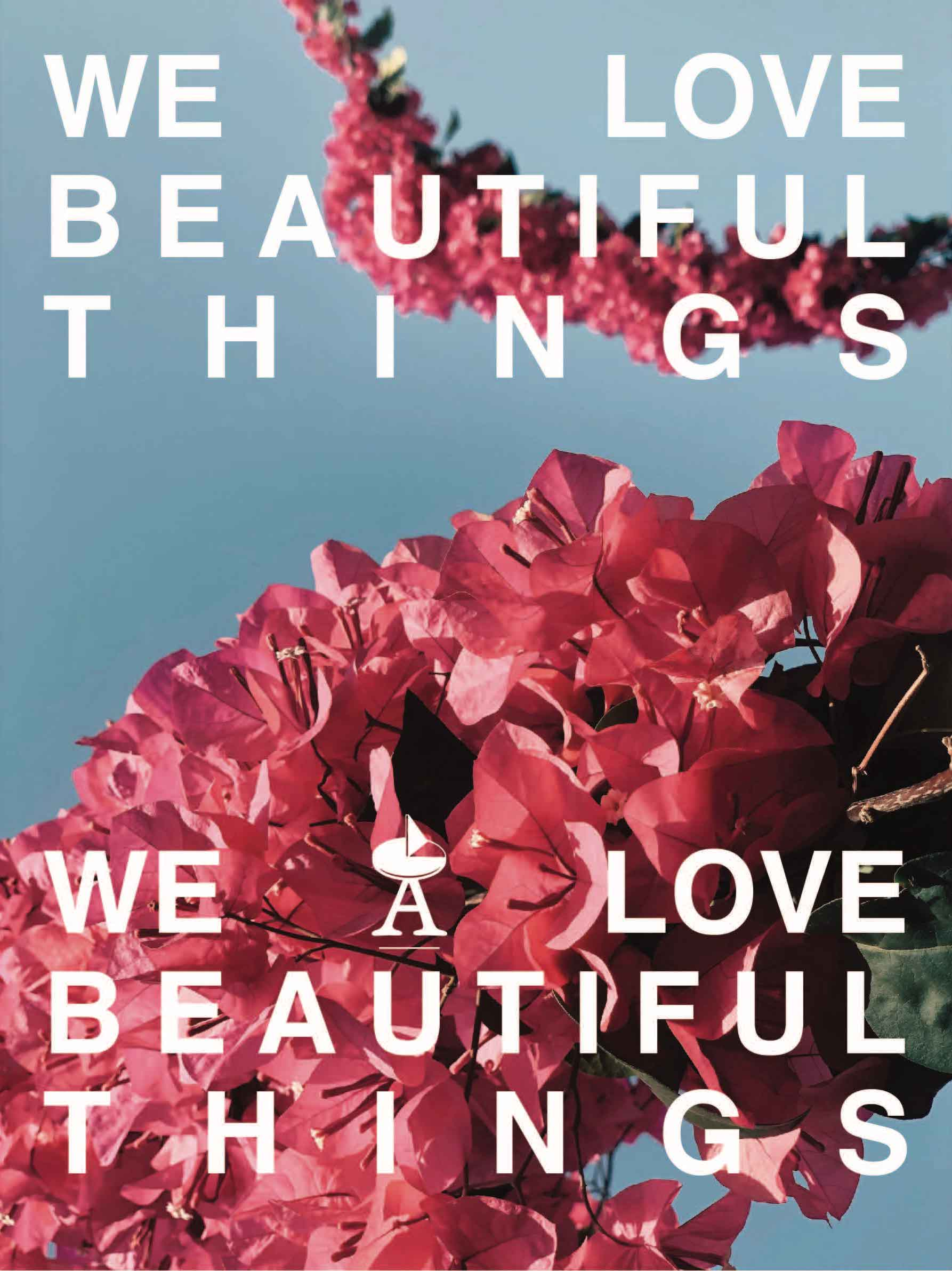 we love beautiful things poter