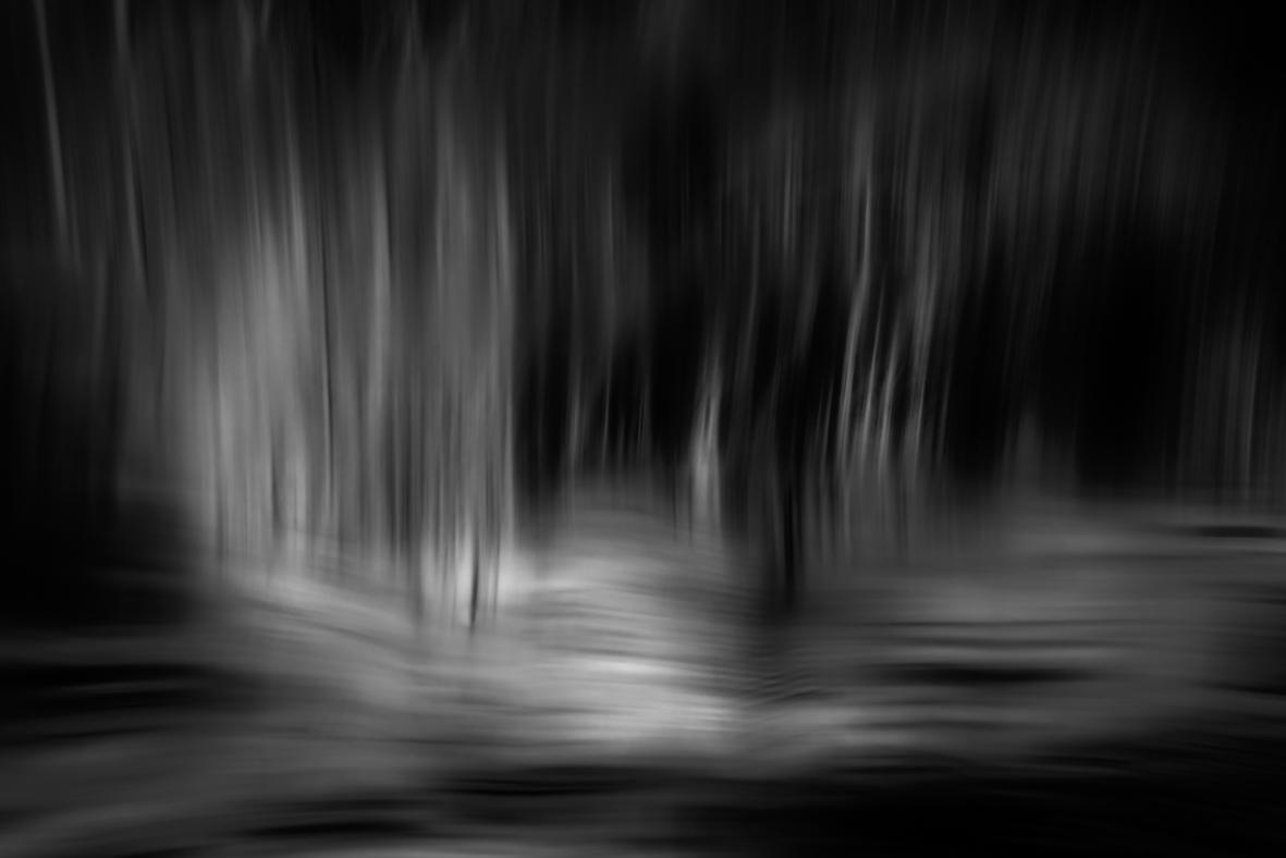 DSC_8573-Edit Grey