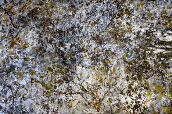 Seeking for Pollock III