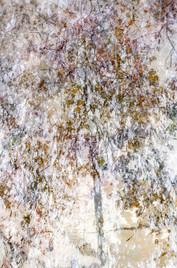 Seeking for Pollock X