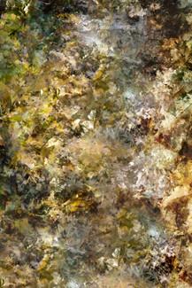 Seeking for Pollock XXX