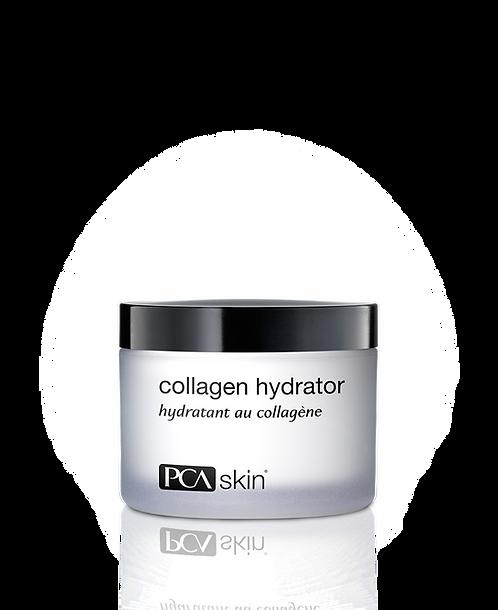 Collagen Hydrator (48.2g)