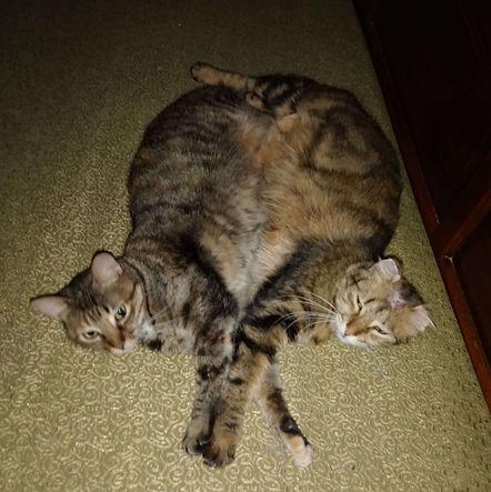 Mimi & Jada