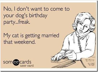 Doggie Birthday Parties?!
