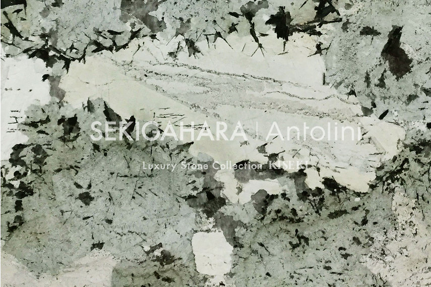 A001-1.jpg