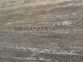 トラベルティーノティタニウム