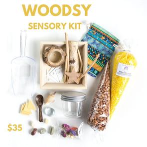 Woodsy Sensory Kit