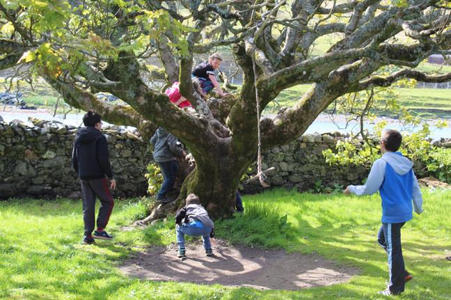 Voxter Outdoor Centre Garden activities