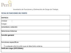 Formato Ficha de funciones del puesto