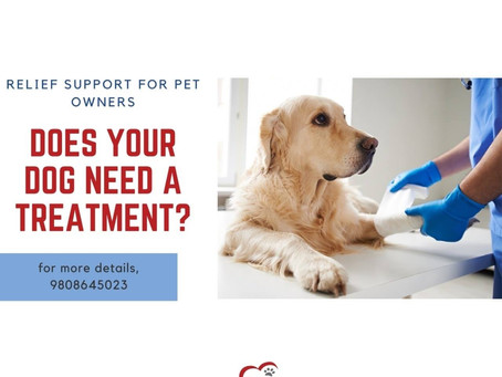 RELIEF OFFER FOR PET OWNERS