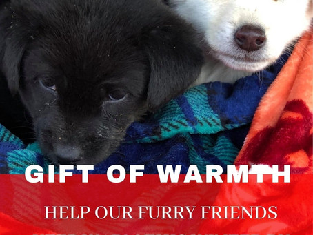 HELP US TO KEEP ANIMALS WARM THIS WINTER