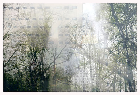 urbis naturalis.jpg
