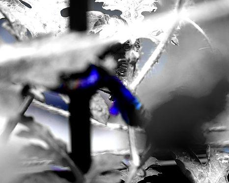 fluyeconstante-detalle2.jpg