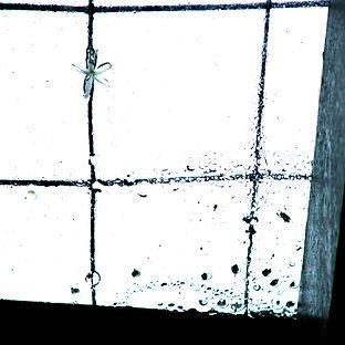 agua-ecoart5.jpg