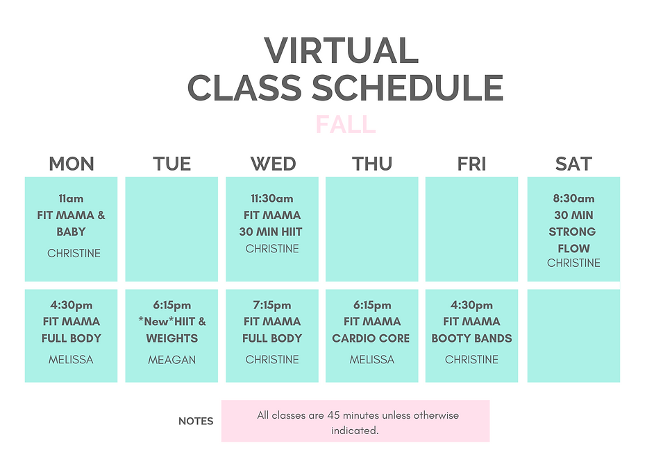 FMT Virtual Classes FALLFINAL.png