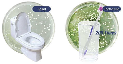 Toilet & Toothbrush.png