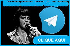 TELEGRAM SITE.png