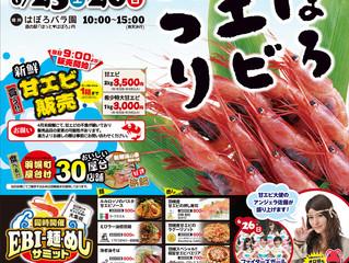 羽幌甘エビ祭り 出店決定