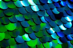 Blue-Green-Sequin-Wedding-Photobooth-Backdrop_2048x2048