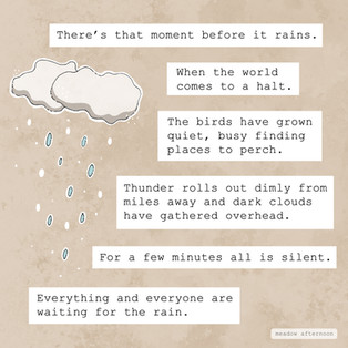 Before the Rain - Mini Paragraph