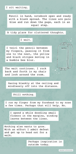 The Wait - Mini Paragraph - Meadow After