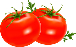 tomato_PNG12569_edited.png