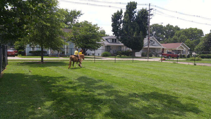 Pony rides are always a big hit