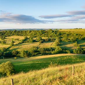 Investing in Dorset's Future