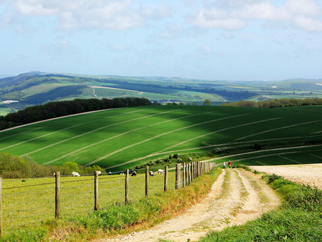 Dorset Council - Briefing note on the proposed Dorset National Park