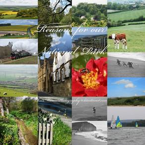 The Dorset Council Plan
