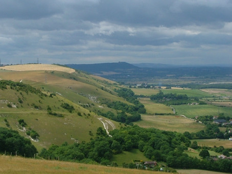 Farming and Land Management in the South Downs National Park - positive engagement and productive wo