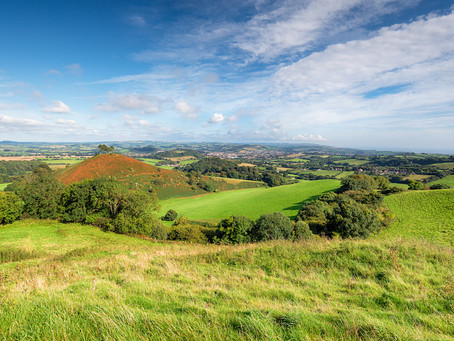 We congratulate Dorset Councillors and look forward to working together to secure Dorset's long-over
