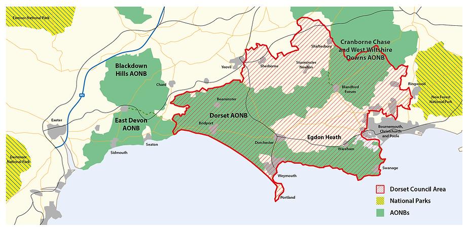 2021_DNP_MAP_v4-01.png
