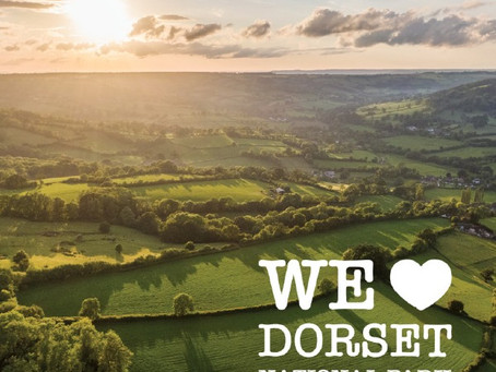 The Dorset Council and a Dorset National Park – Working in Partnership for all of Dorset