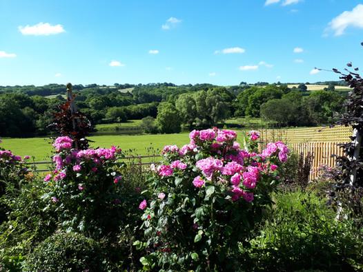 Corscombe, West Dorset
