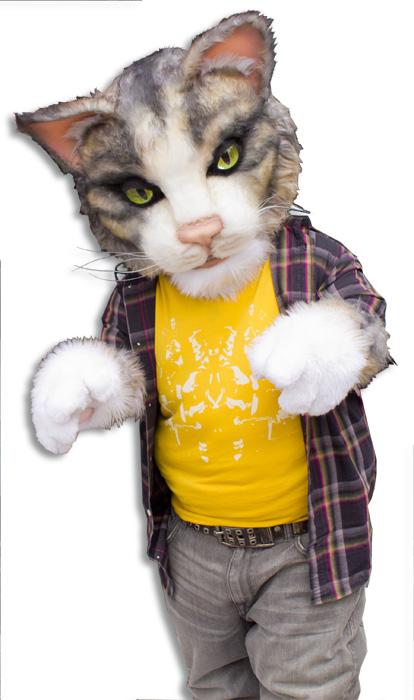OMGWTF Cat