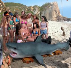 WWE Shark