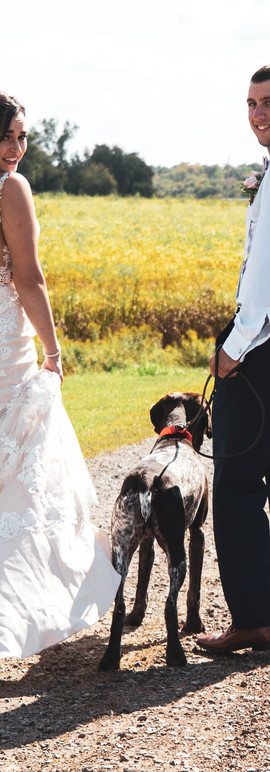 Break from the wedding to walk the dog
